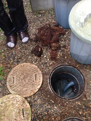 排水の写真